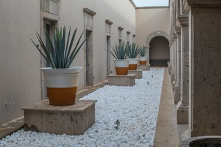 Patrón Designed a Spanish Colonial Guest House with Modern Flair - Photo 2 of 14 - Cacti, agave and semi-desert vegetation were used to reduce facility water consumption and rain absorption wells were installed to water the plants present.