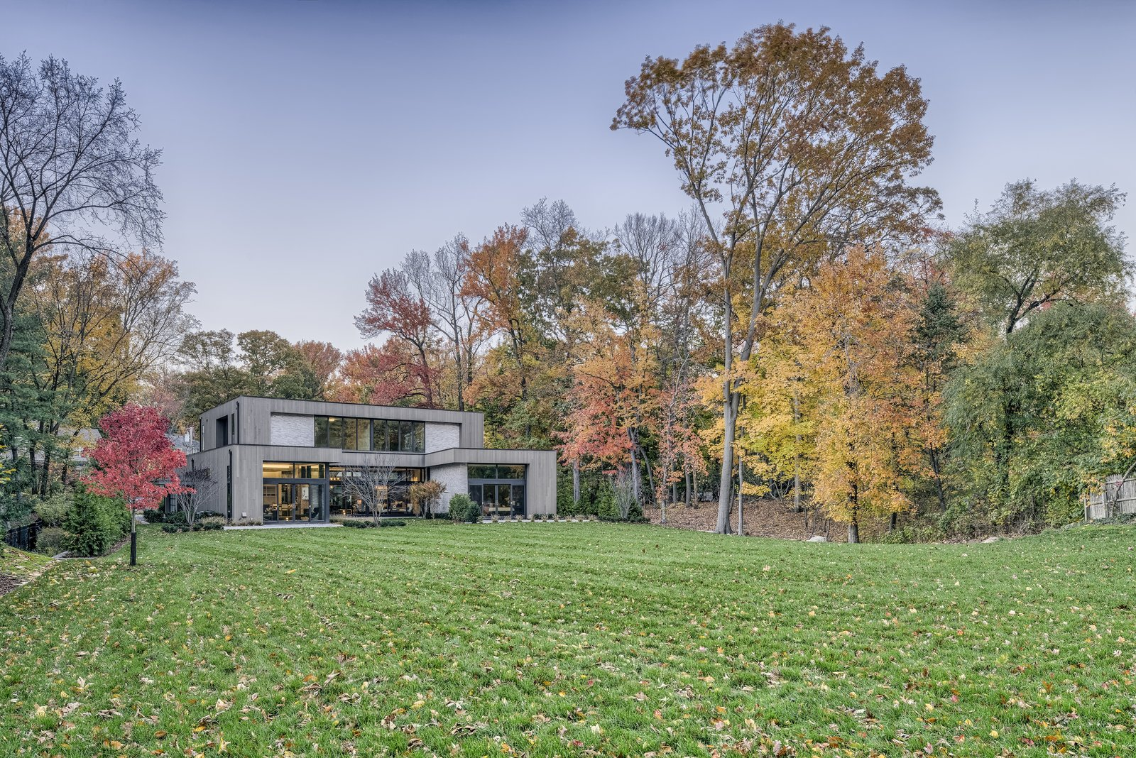 Backyard  Ferndale by Melanie Oster Rosenbaum