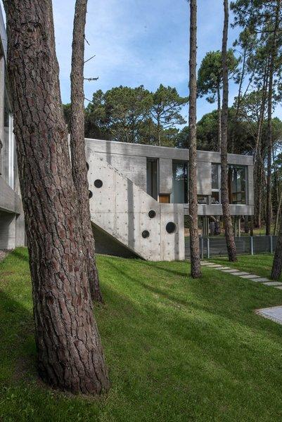 © Diego Medina Photo 11 of Casa Kuvasz modern home