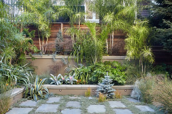 Insanely meticulous landscaping by Christopher Reynolds. This is the view from the newly created Art Studio. Photo 5 of Pacific Heights Historic Renovation modern home