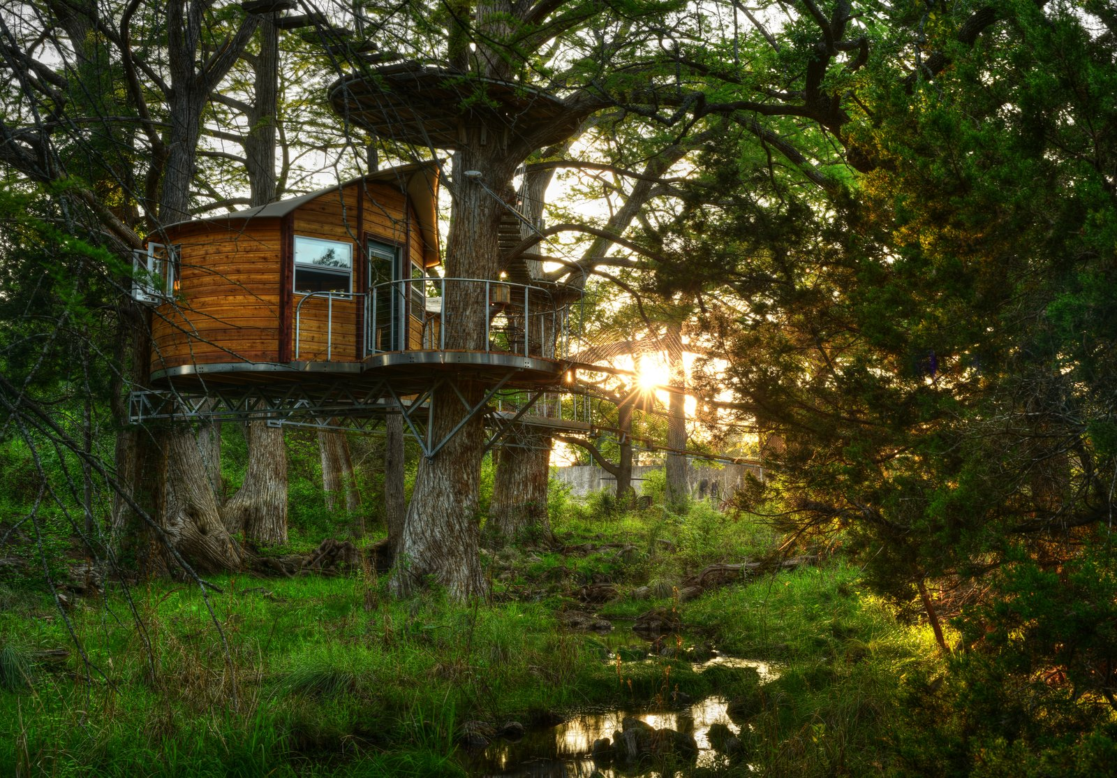 The Willow & Juniper tree house by ArtisTree Tagged: Exterior, Treehouse Building Type, and Wood Siding Material.  Photo 2 of 16 in Experience Tree-Top Living at One of These Sustainable Tree Houses