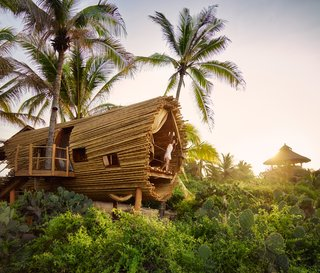 Experience Tree-Top Living at One of These Sustainable Tree Houses - Photo 11 of 15 - The Playa Viva tree house by ArtisTree