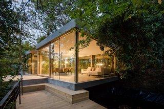 A Portuguese Glass House Uses Surrounding Foliage as a Privacy Screen