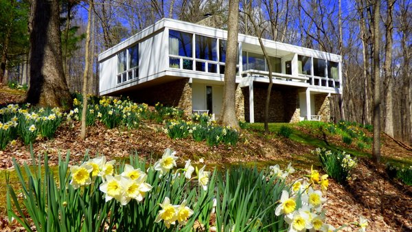 Southeast facing glass wall.  There are about 10,000 bulbs in the landscaping.   Photo 2 of Phelps Residence modern home