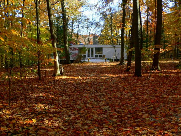 The house is located at the end of a quarter-mile long driveway through the forest. Photo 4 of Phelps Residence modern home