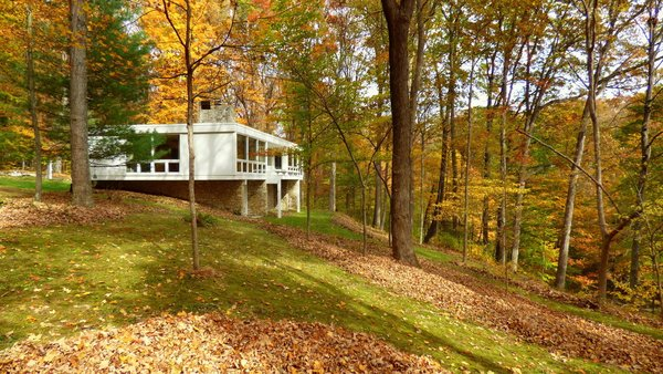 Most of the ground under the trees is covered with moss not grass.   Photo 5 of Phelps Residence modern home