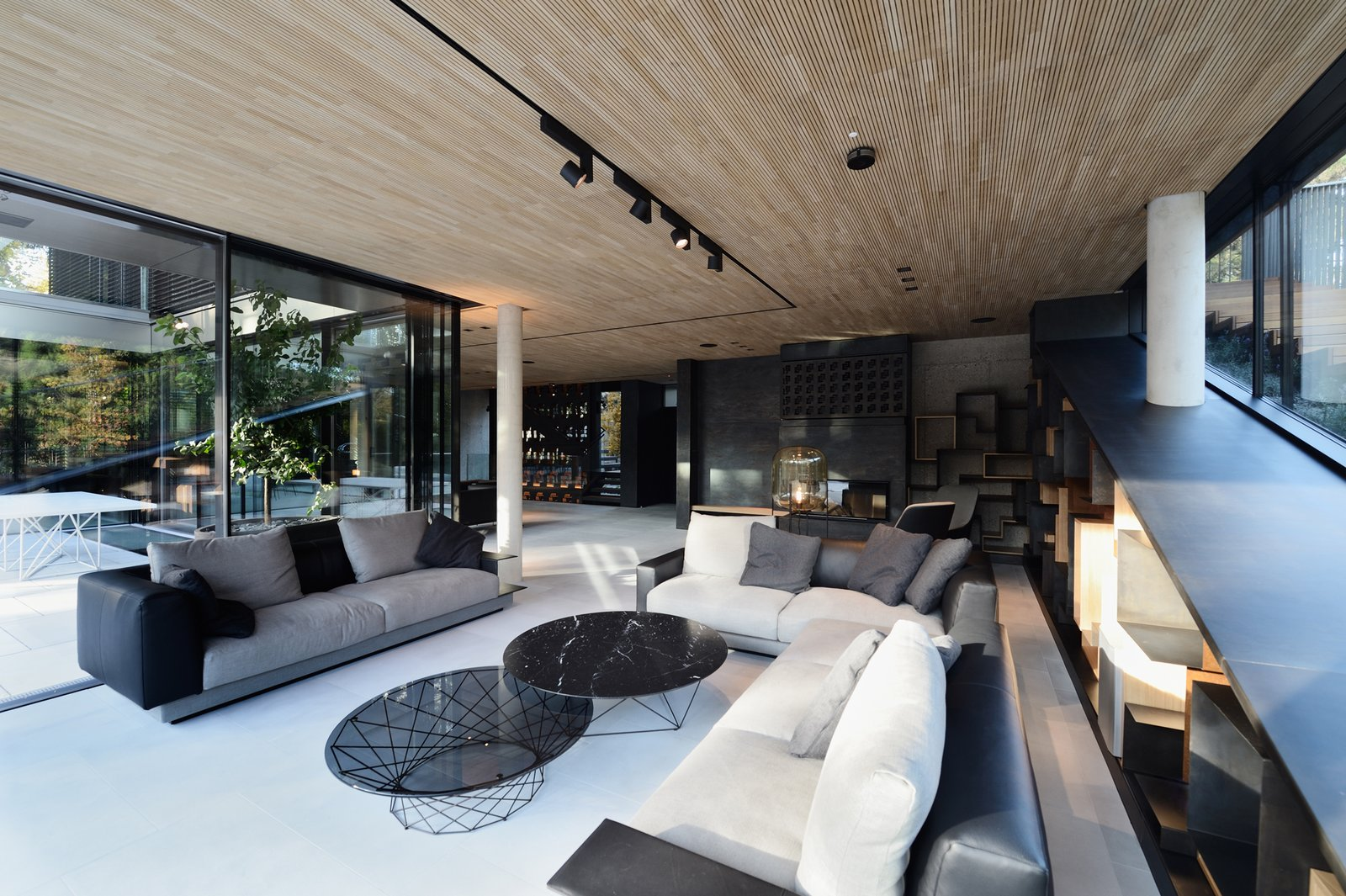 Living room with the fireplace