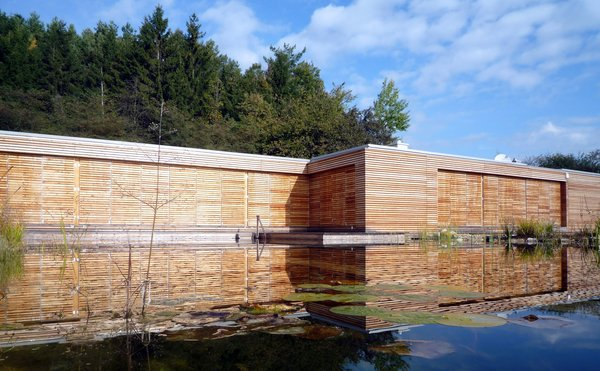Swim biotope Photo 7 of Wood House modern home