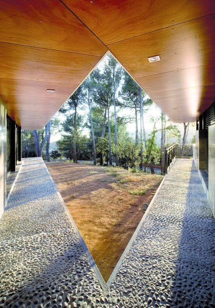 V embracing the woods Photo 8 of Rambed House modern home