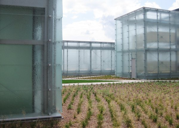 Modern home with outdoor. New perspectives Photo 2 of Silesian Museum Katowice
