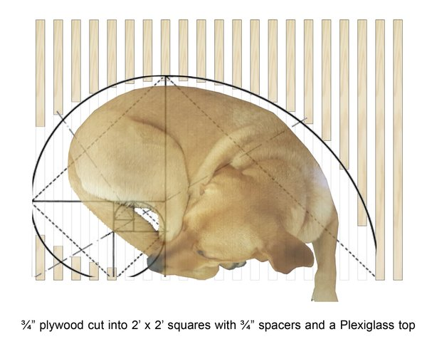 Plan of Doghouse, shows relation to the curve of dogs as they lounge Photo 2 of K9 Kouch modern home