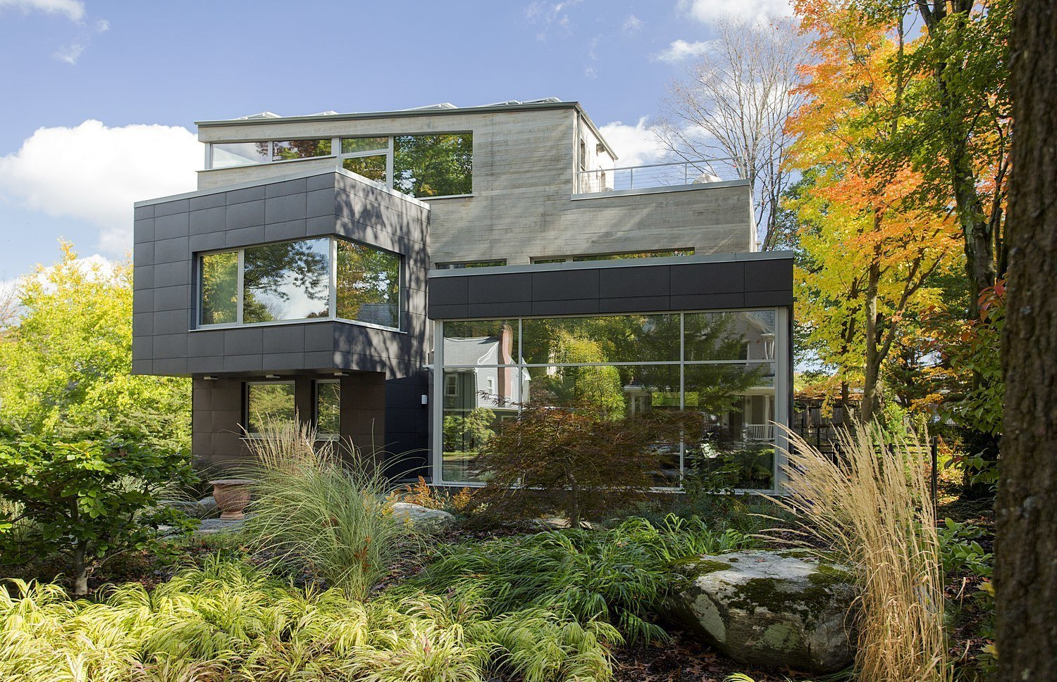 Brookline Residence in Brookline, Massachusetts Tagged: Outdoor, Walkways, Hardscapes, Shrubs, Trees, Gardens, Front Yard, Woodland, and Garden.  Photo 5 of 11 in Dwell's Top 10 Design Pros of 2017 from Brookline Residence