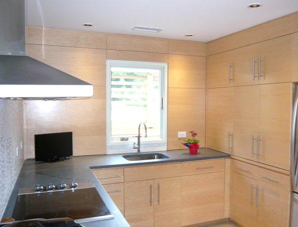 Kitchen Photo 7 of Jureller Lake House modern home