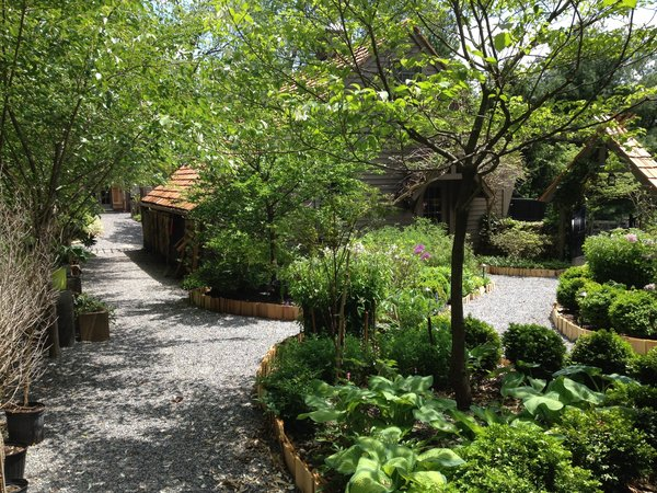 Cottage Garden in May, Village Setting, Cedar Edging, Crushed stone pathway, lush outdoor living space Photo 10 of The Salt Box modern home