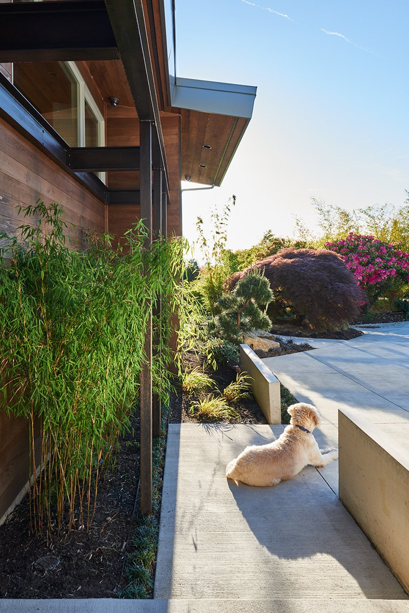 Mid-century sunsets  Clyde Hill Mid-Century by Garret Cord Werner