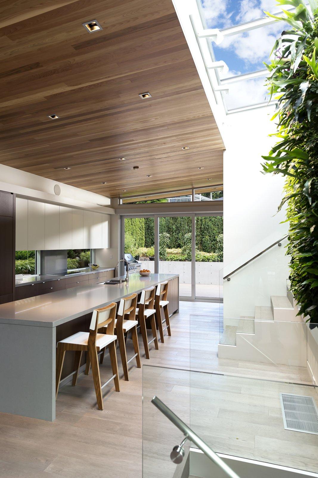 Garden Wall Residence, Kitchen