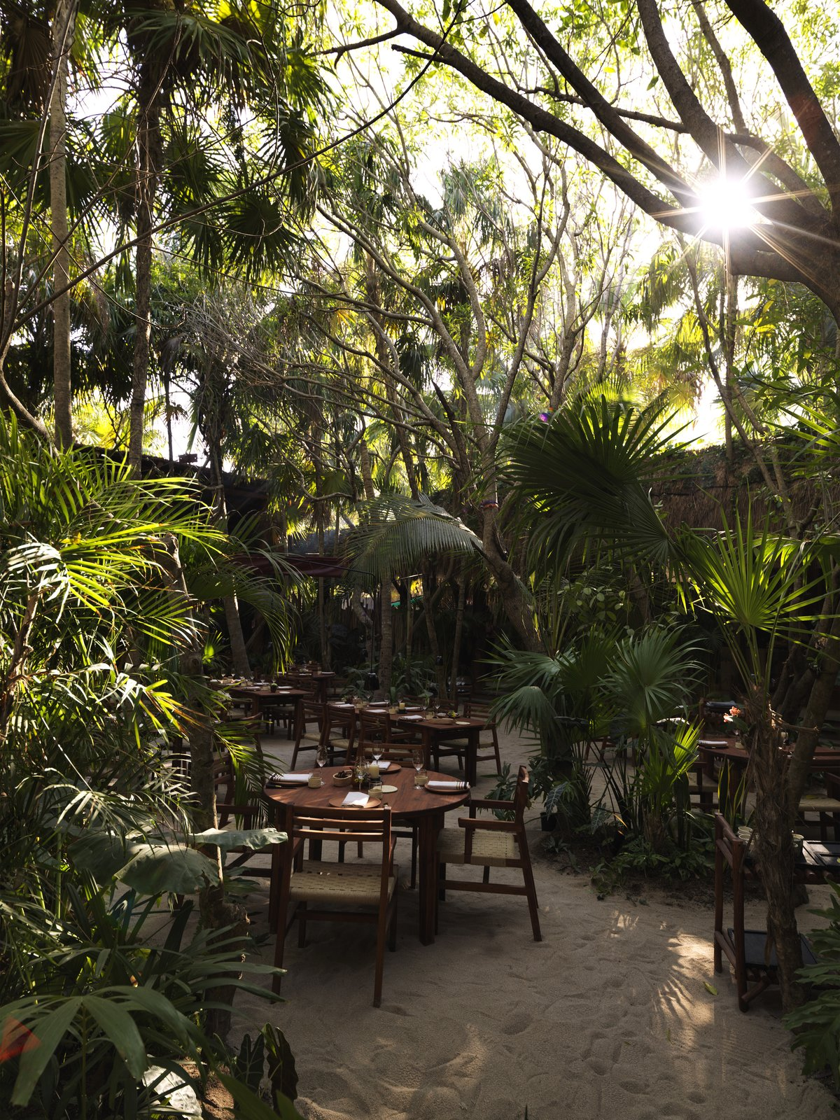 Photo 7 of 10 in A Look at the Design of Noma Mexico, Tulum's Pop-Up Restaurant Inspired by Local History