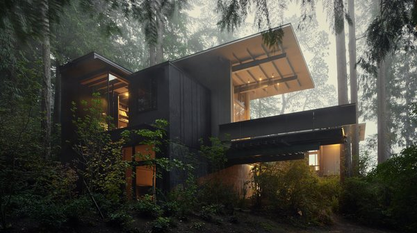 Modern home with outdoor, woodland, and slope. Cabin at Longbranch | Olson Kundig Photo  of Cabin in Longbranch