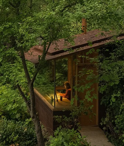 This tiny studio fits quietly into the surrounding forest. Photo  of Studio / Bunkhouse modern home