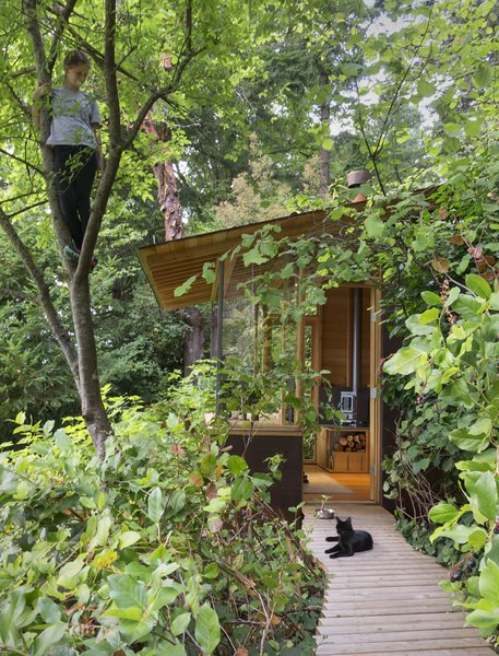 The family cat enjoys the Studio / Bunkhouse as well. Photo 2 of Studio / Bunkhouse modern home