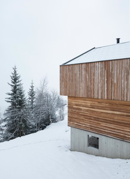 Modern home with outdoor, slope, woodland, and trees. Photo 6 of Mountain House