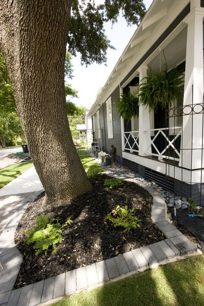Updated Landscaping Photo 2 of Historic Bungalow modern home