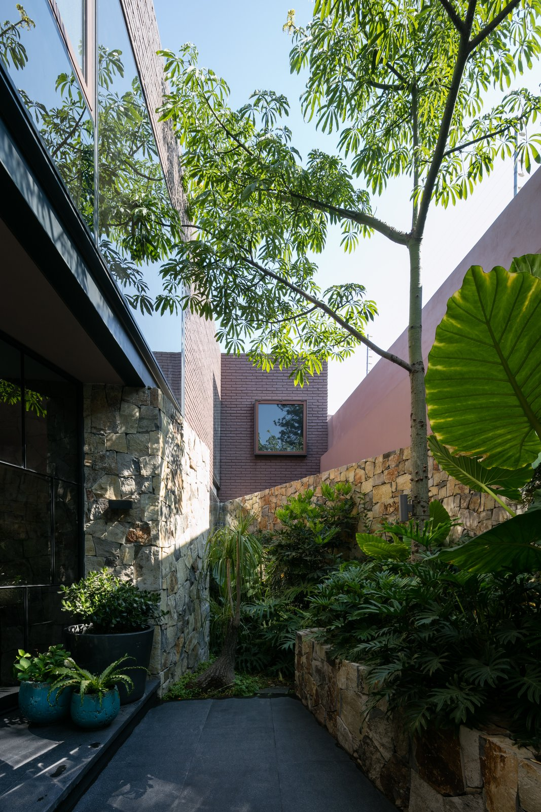 Tagged: Outdoor, Side Yard, Trees, Garden, and Landscape Lighting.  Casa OM1 by AE Arquitectos