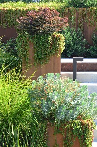 Corten Planter Detail Photo 9 of Los Altos Hills Landscape modern home
