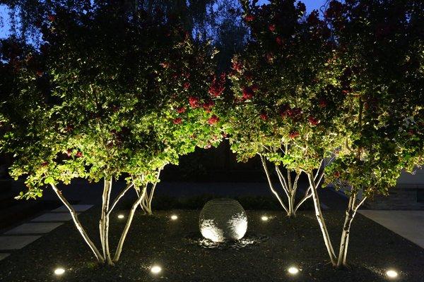 Photo  of Palo Alto Landscape modern home