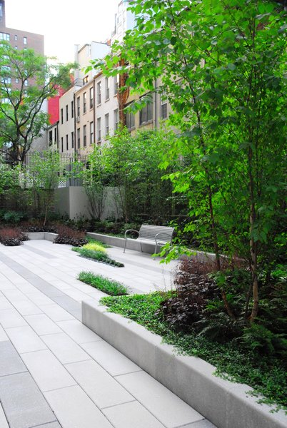 Planting Walls & Pavers Photo 3 of Modern Linear Courtyard modern home