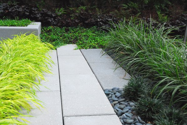 Plantings Meet Stone at Edge Photo 4 of Modern Linear Courtyard modern home