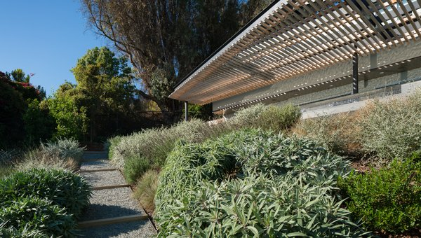 Modern home with outdoor, decomposed granite patio, porch, deck, trees, back yard, shrubs, grass, slope, large patio, porch, deck, wood patio, porch, deck, small patio, porch, deck, and metal patio, porch, deck. View looking up toe path towards terrace Photo 5 of Malibu Hillside