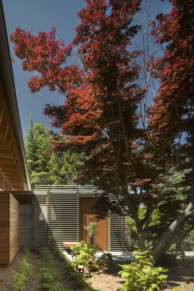 Photo 2 of Los Altos Residence modern home