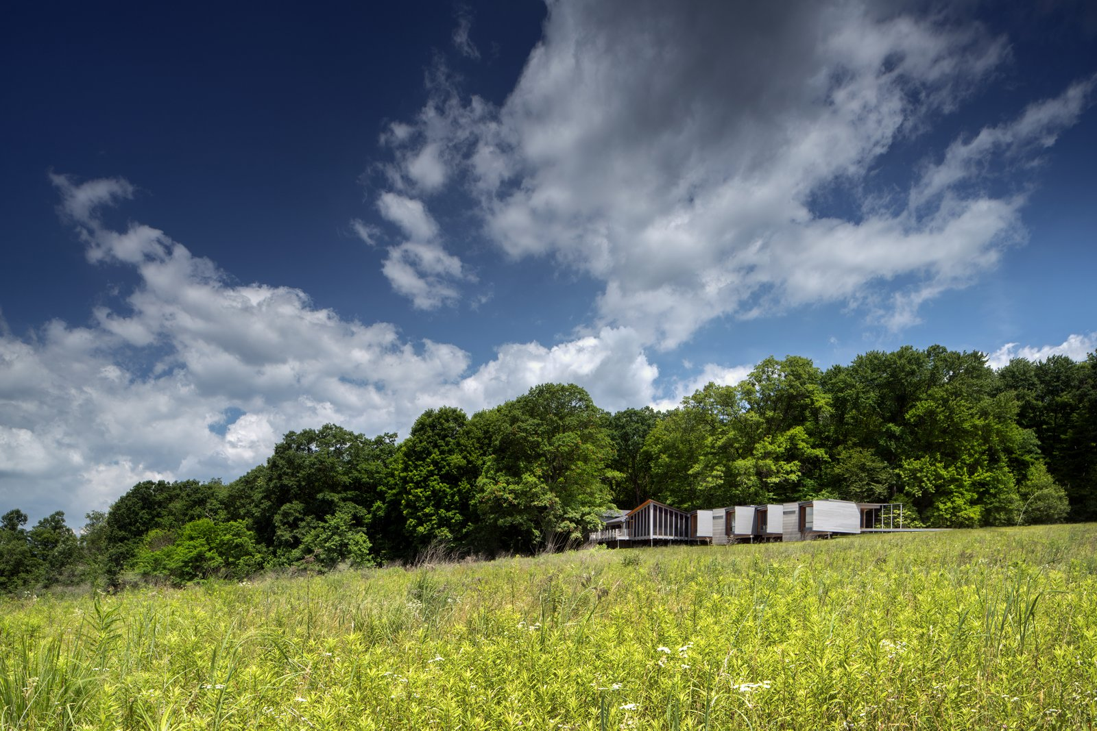 Tagged: Outdoor, Grass, Trees, and Field.  High Meadow at Fallingwater by Bohlin Cywinski Jackson