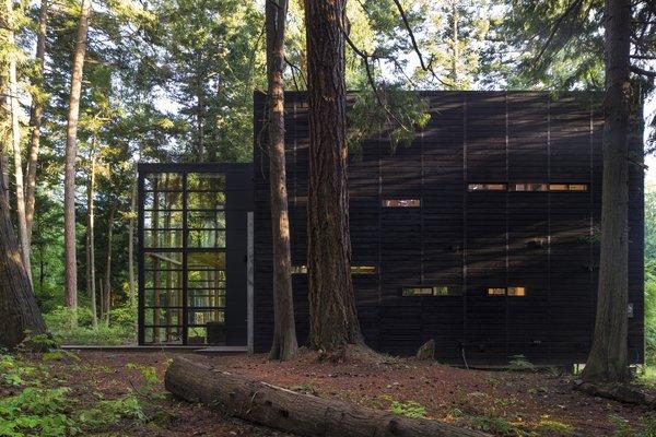 The cedar siding was treated with an Auson Black Pine Tar Stain. Photo 5 of Lightbox modern home