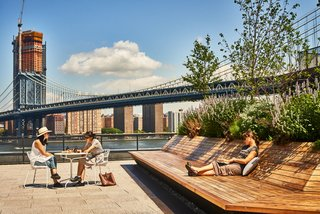 A Brooklyn-Based Landscape Firm That's Reshaping New York City's Green Urban Scene - Photo 3 of 13 -
