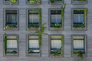 A Brooklyn-Based Landscape Firm That's Reshaping New York City's Green Urban Scene - Photo 6 of 13 -