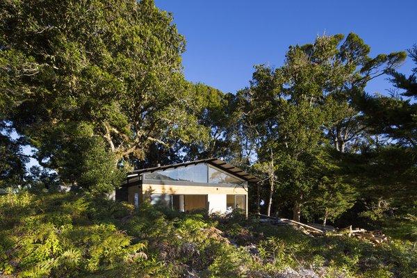 EFC Cabin | VOID Cr Photo 3 of EFC Cabin modern home