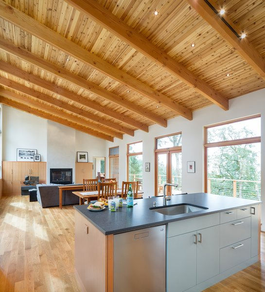 The kitchen island overlooks the length of the great room. The robin's egg blue laminate on the lower cabinet faces, evokes the soft grey of the home's exterior siding. Photo 6 of Sunset Knoll House modern home