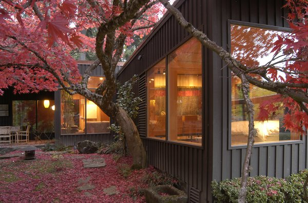 A majestic Japanese maple nestles against the Master Bedroom and adds vibrant color to the courtyard. Photo  of Belluschi Addition modern home