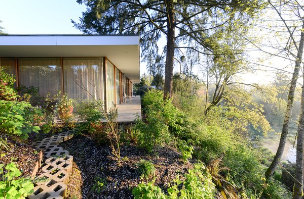 Set on an urban in-fill lot at the edge of a terrace escarpment overlooking protected  wetlands and a wild river, the Courtyard House weaves between natural and urban contexts. Photo  of The Courtyard House modern home