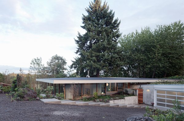 """In response to the demand to live harmoniously with nature and community, the Courtyard House is conceived as a canopy structure: a single volume framed between a cantilevered concrete slab below and a roof """"umbrella"""" above. Photo 4 of The Courtyard House modern home"""