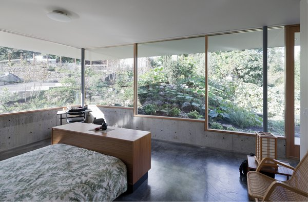 A stepped glass and concrete envelope negotiates transparency and privacy to the neighboring context.  Photo 9 of The Courtyard House modern home