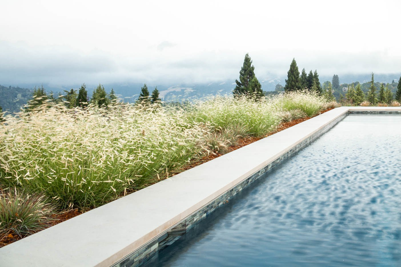 Tagged: Outdoor, Back Yard, Hardscapes, Grass, and Large Pools, Tubs, Shower.  A pool with a view by Agnieszka Jakubowicz