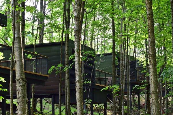 Summer Exterior Shot Photo 4 of SHAK Cottages modern home