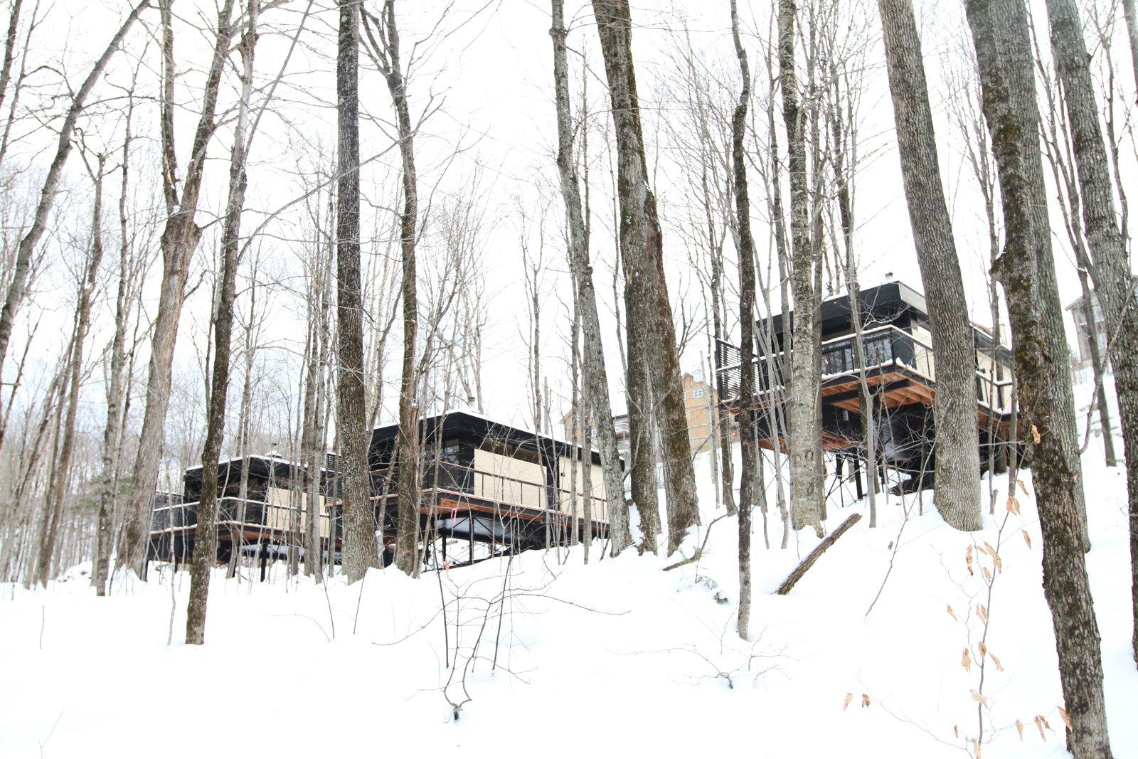 Winter Exterior Shot  SHAK Cottages by Martin Delisle