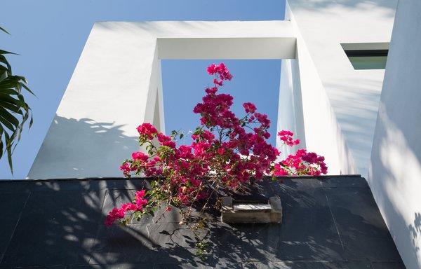 Photo 17 of 475 Golden Beach modern home