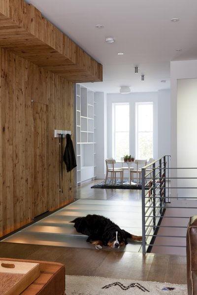 Photo 4 of Townhouse for Man and Dog modern home