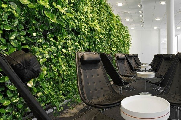 Enhanced Office Space Photo  of Green Conference Room modern home