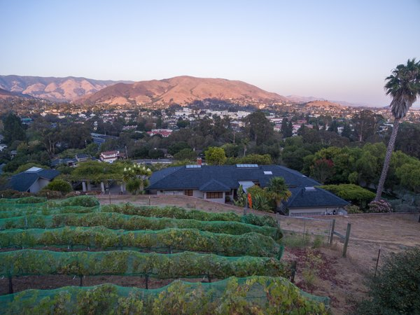 Vineyard & Panoramic City Views Photo 3 of The Dettmer House - 2 Acres in Downtown modern home